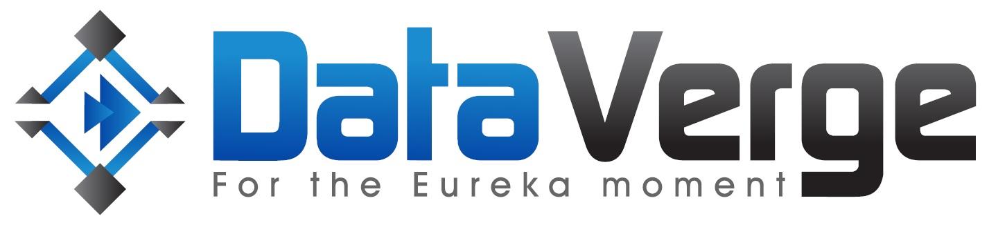 DataVerge Logo